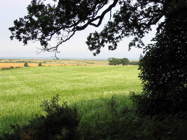 View to The Wash  from Lodge Hill