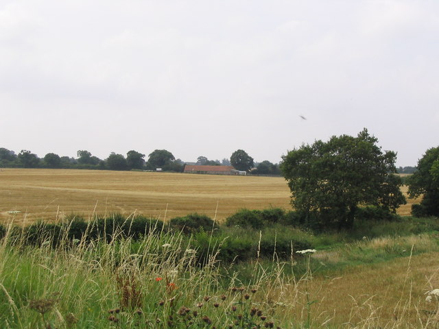Fields at Great Walsingham