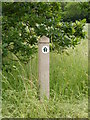TM3597 : Wherryman's Way circular walk marker by Glen Denny