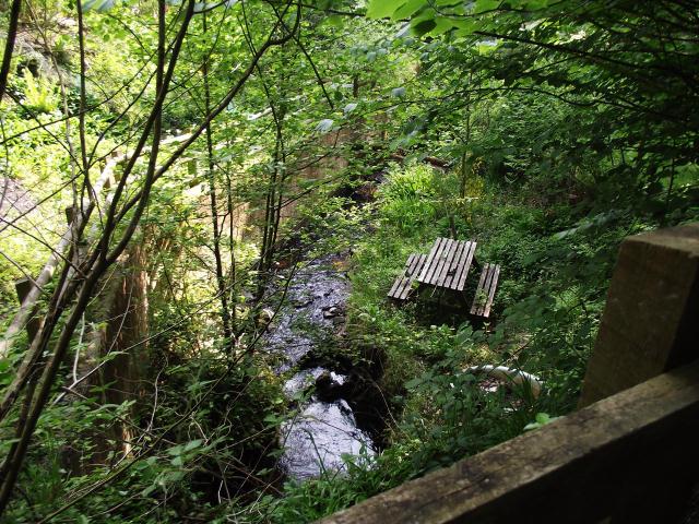 Shady streamside garden picnic area