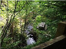 ST1541 : Shady streamside garden picnic area by Stephen Wilks