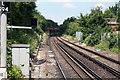 TQ3866 : West Wickham:  Railway towards Eden Park by Dr Neil Clifton