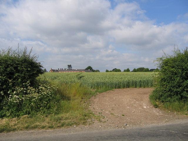 Field opposite Tile Farm