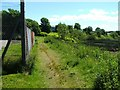NS3976 : Footpath beside the River Leven by Lairich Rig