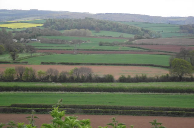 Brendon Hill foothills