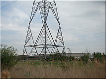 TQ5479 : Pylon in Rainham Marshes Nature Reserve by Robert Lamb
