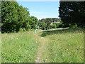 ST4834 : Ivythorn Hill by Alan Hunt