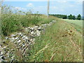 ST6863 : Old drystone wall by James Ayres
