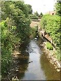 SJ8297 : River Medlock by Jonathan Wilkins