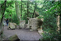 TQ3472 : The Rookery, Sydenham Hill Wood by N Chadwick