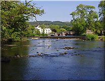 SD3686 : River Leven below Newby Bridge by Ian Taylor