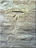 NY6820 : Benchmark on wall of Bongate by Roger Templeman