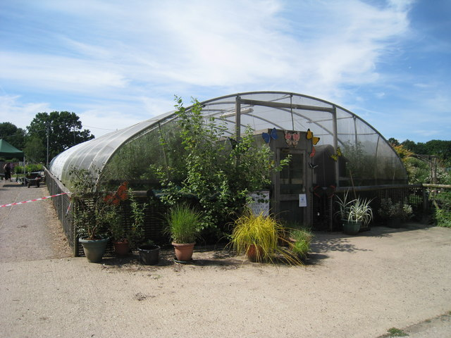 Butterfly Tunnel at Rare Breeds Centre