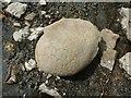 NS4178 : Cementstone nodule in Auchenreoch Glen by Lairich Rig