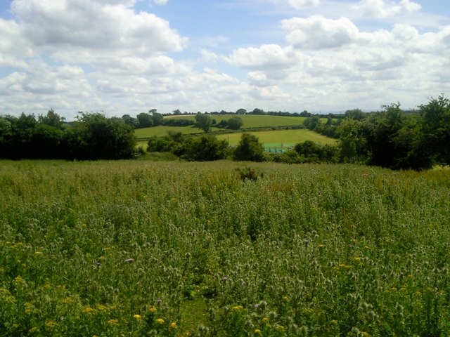 Pudding Hill, Co Meath