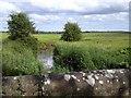 O0164 : River Nanny, Co Meath by C O'Flanagan