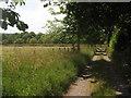 TQ4541 : Bridleway from Ludwells Farm by David Anstiss