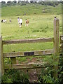 SO8194 : Ramblers Stile by Gordon Griffiths