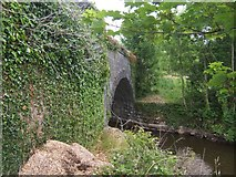 H0509 : Shannon-Erne Waterway - Kilmacsherwell Bridge by John M