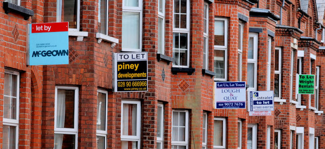 """""""To  Let"""" signs, Belfast"""