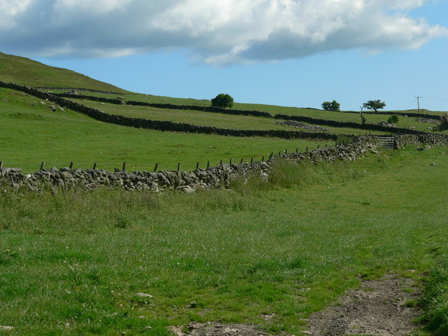 Field patterns on Larg Hill