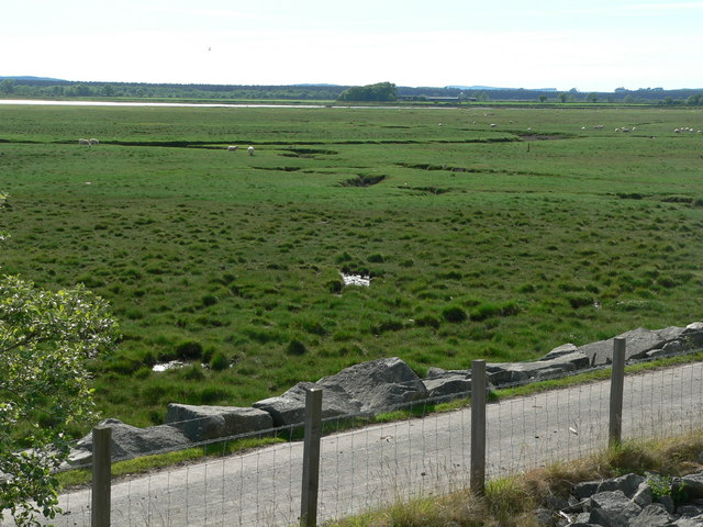 Mud flats by River Cree