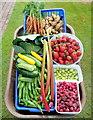 SO6424 : Summer produce by Jonathan Billinger