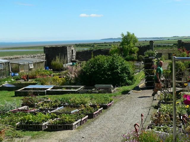 Nursery garden within town wall
