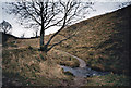 SD7559 : Mini Ford - Gisburn Forest - Bowland by Tom Howard