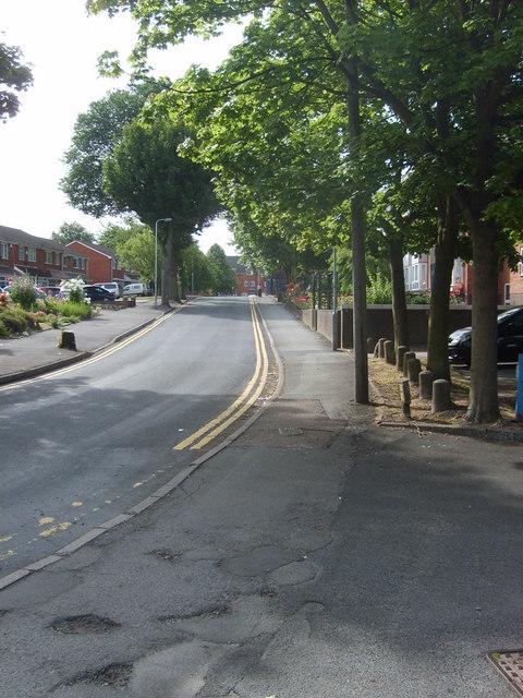 Mountford Lane View