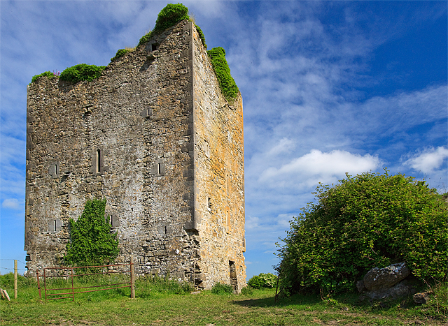 Castles of Leinster: Coole, Offaly (2)