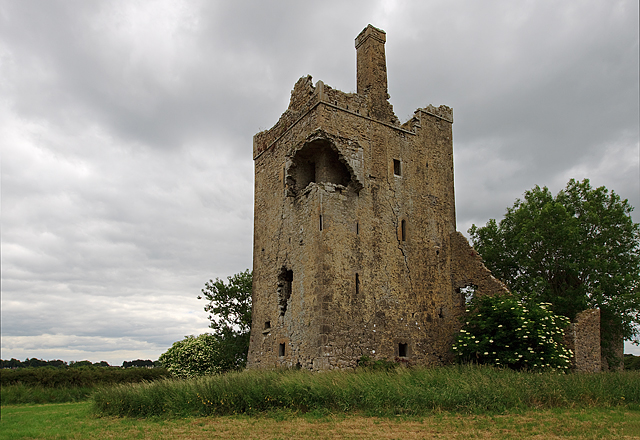 Castles of Leinster: Srah, Offaly (2)