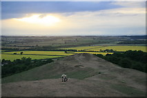 SP3952 : View from Burton Dassett Hills Country Park by Chris Allen