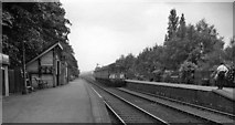 SK6443 : Burton Joyce Station, with train by Ben Brooksbank