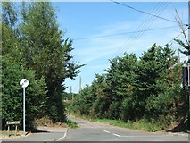 SX9886 : The south end of Mill Lane, Exton by David Smith