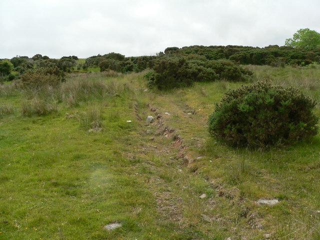 Drainage grip on hillside