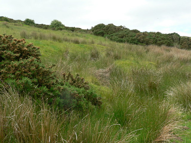 Rough hillside above Kilervan