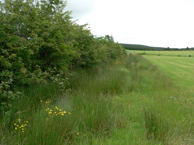 Better land near Conie Glen