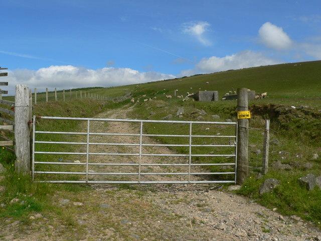 Gate to hillside grazing