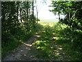 SE9064 : Farm track off the B1253 by JThomas