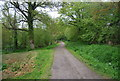 TQ3829 : Sussex Border Path heading north along by fish ponds by N Chadwick