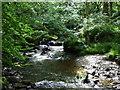 SM9935 : Falls on Afon Gwaun by ceridwen