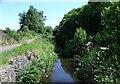NS7076 : The river Kelvin by Robert Murray