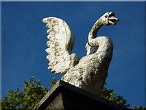 SX9063 : Rearing swan, Gatepost, Torre Abbey, Torquay by Tom Jolliffe