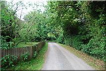 TG2105 : Lane south of Keswick Mill by N Chadwick