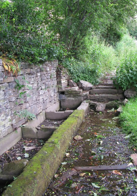 Wells or troughs at Well Green