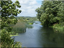 SZ1394 : River Stour looking towards Iford Weir by John Courtney