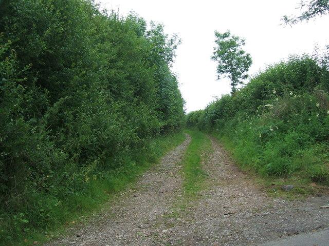Farm road to Ploughlands