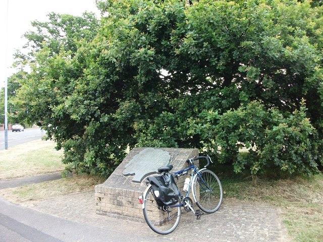 The Midland Oak, Lillington Road