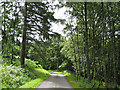 NO0049 : Road between Tulliemet and Guay by Lis Burke